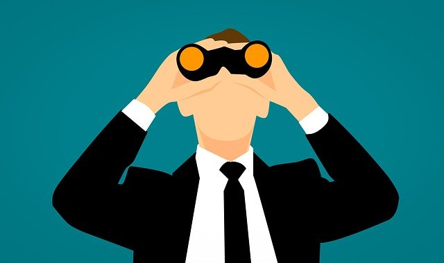 observe, monitoring, spy
