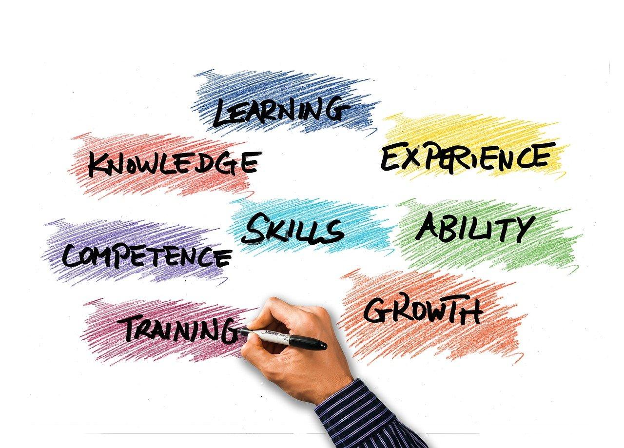 スキルや能力や経験などと書く人