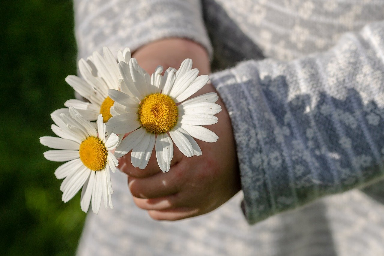 花を持っている子どもの手