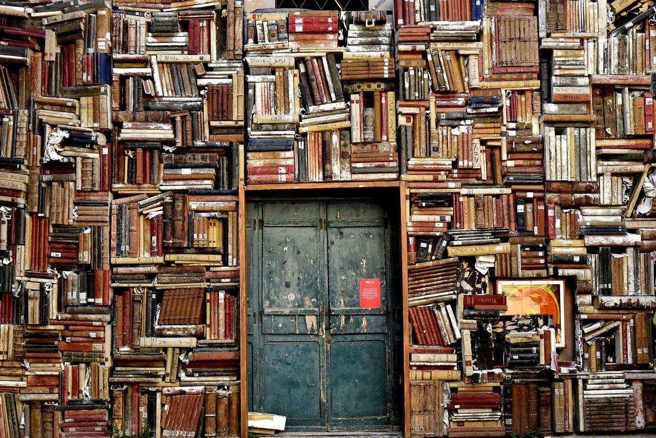 知識、本棚