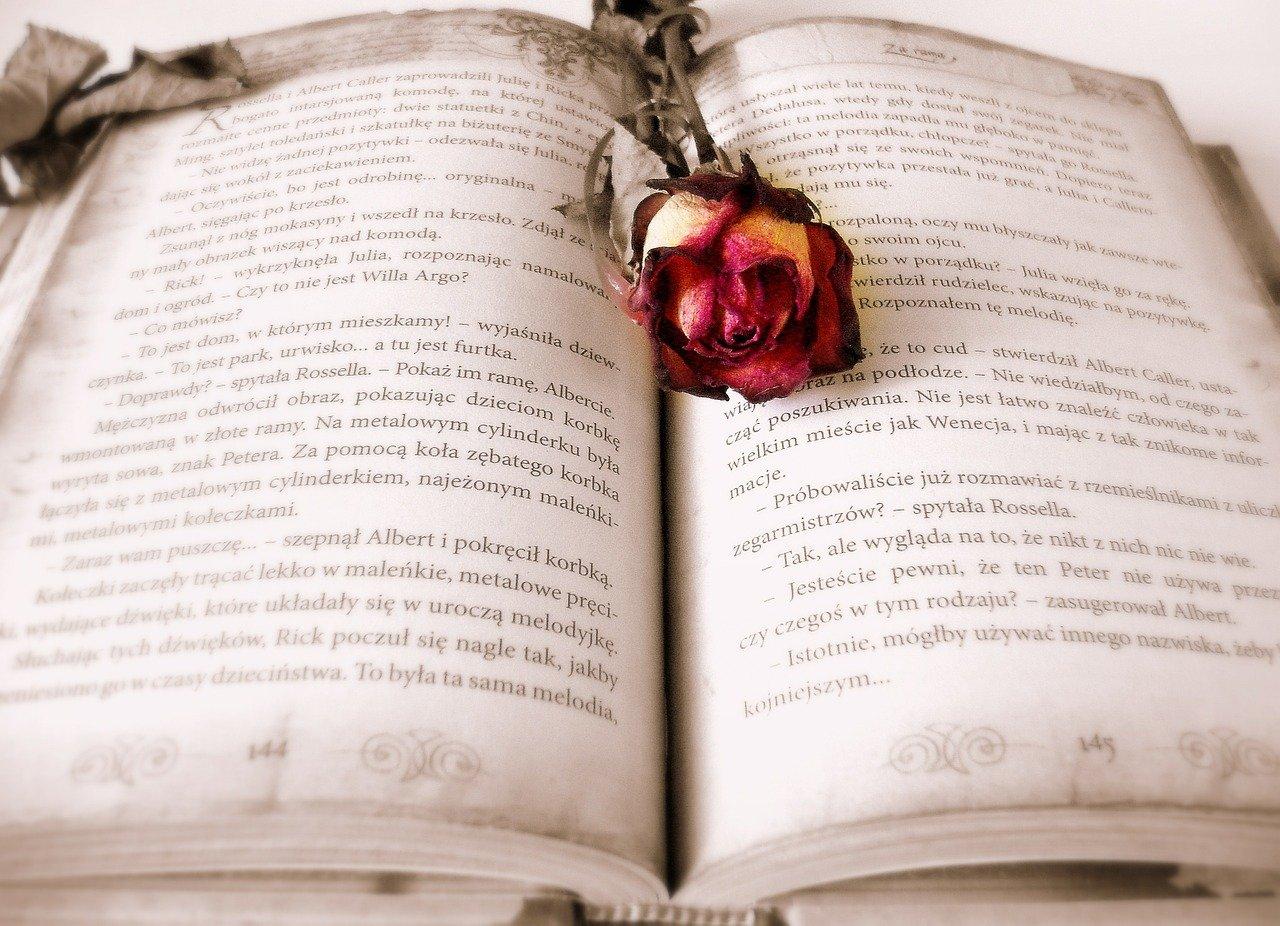 本の見開き
